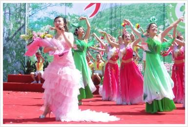 《又闻槐花香》中国·永寿第六届槐花节